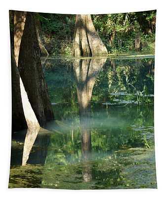 Radium Springs Creek In The Summertime Tapestry