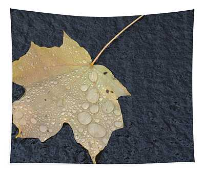 Rain Drops On A Yellow Maple Leaf Tapestry