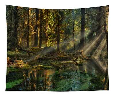 Rain Forest Sunbeams Tapestry