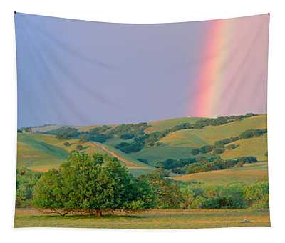 Rainbow And Rolling Hills In Central Tapestry