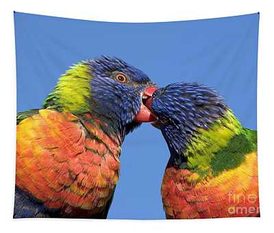 Rainbow Lorikeets Tapestry
