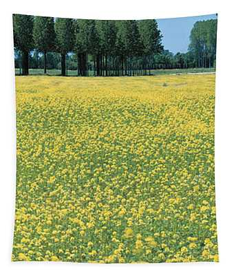 Rape Flowers France Tapestry