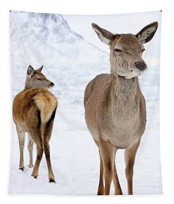 Red Deer In The Snow Tapestry