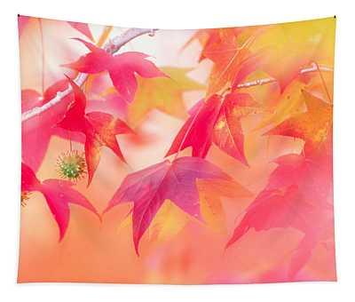 Red Leaves With Backlit, Autumn Tapestry