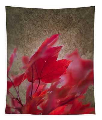 Red Maple Dreams Tapestry