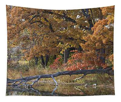Red Oaks On The Shore Tapestry