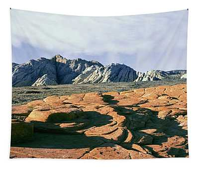 Red Petrified Sand Dunes White Navajo Tapestry