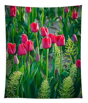 Red Tulips In Skagit Valley Tapestry