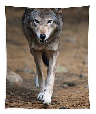Red Wolf Strut Tapestry