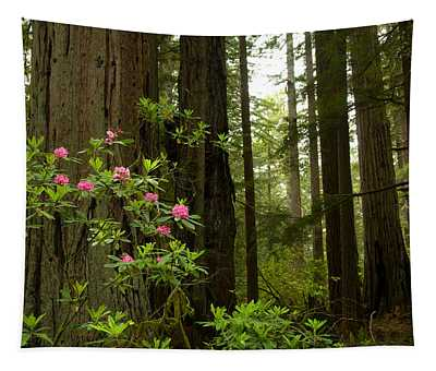 Del Norte County Photographs Wall Tapestries