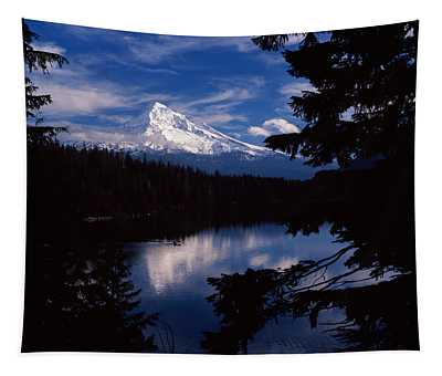 Reflection Of A Snow Covered Mountain Tapestry