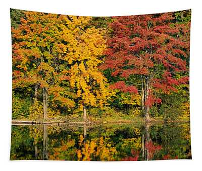 Reflection Of Trees In Water, Saratoga Tapestry