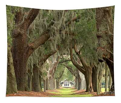 Retreat Avenue Of The Oaks Tapestry