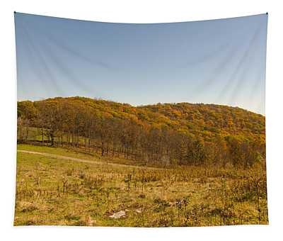 Rich Mountain Autumn Tapestry