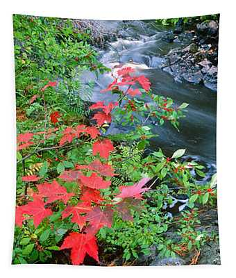 River Flowing Through A Forest, Black Tapestry