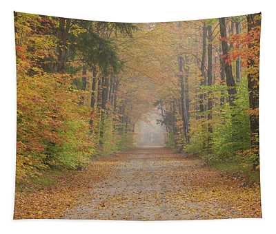Road Passing Though Forest In Autumn Tapestry