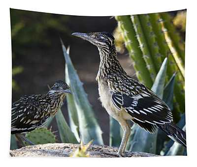 Roadrunners At Play  Tapestry