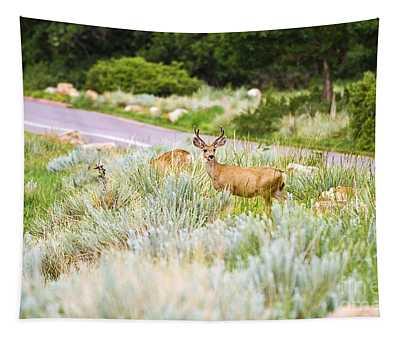 Roadside Buck Tapestry