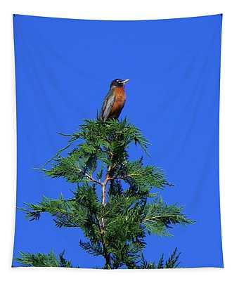 Robin Christmas Tree Topper Tapestry