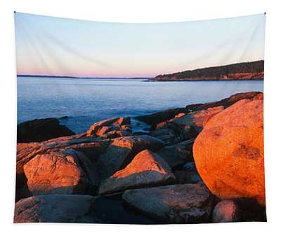 Rock Formations On The Coast, Otter Tapestry