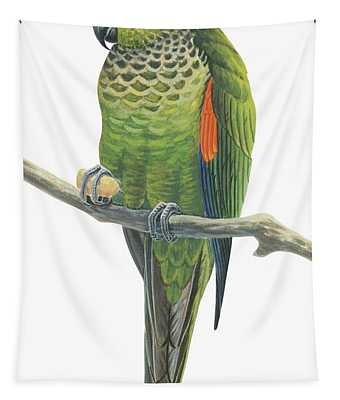 Rock Parakeet Tapestry