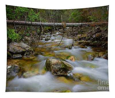 Rocky Forest Creek With Motion Blurred Water Tapestry