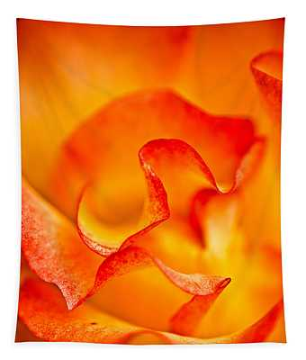 Rose Petals Closeup Tapestry