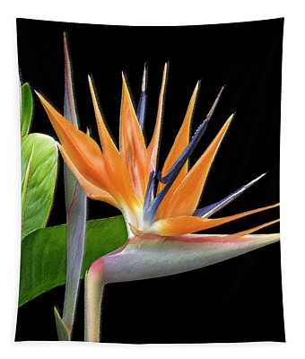 Royal Beauty I - Bird Of Paradise Tapestry