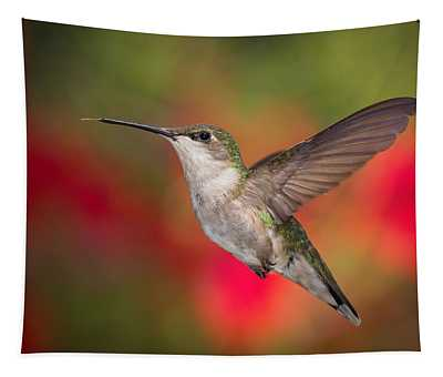 Ruby Throated Hummingbird Tapestry