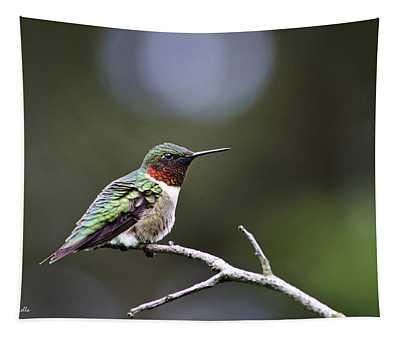 Ruby Throated Hummingbird Spotlight Tapestry
