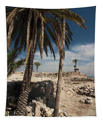 Ruins Of Ancient City, Megiddo National Tapestry