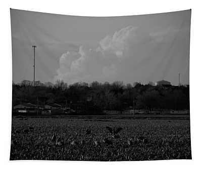 Sand Hill Cranes With Nebraska Thunderstorm Tapestry
