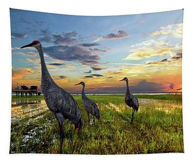 Sandhill Sunset Tapestry