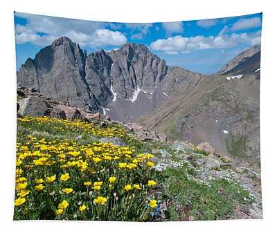 Sangre De Cristos Crestone Peak And Wildflowers Tapestry