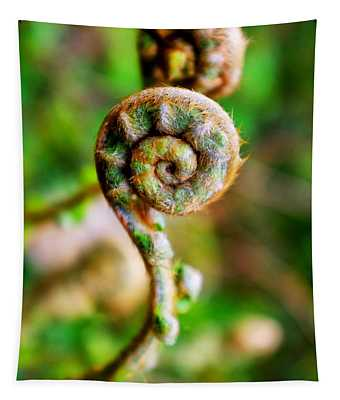 Scaly Male Fern Frond Tapestry