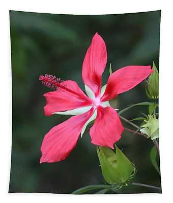 Scarlet Hibiscus #3 Tapestry
