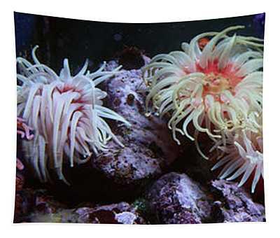 Sea Anemone Underwater Tapestry