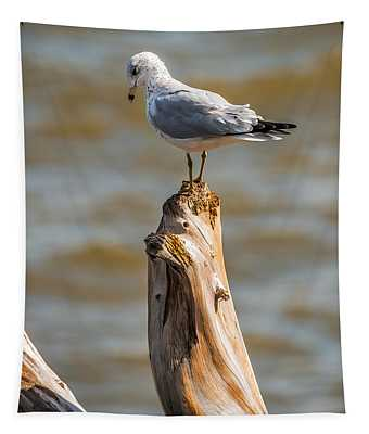 Sea Gull On Driftwood Tapestry