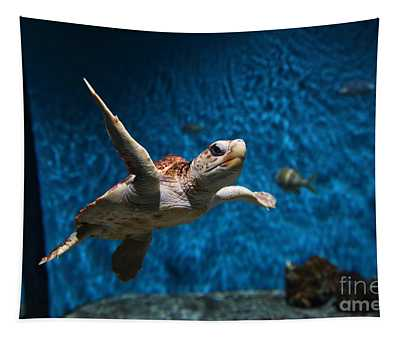 Sea Turtle 5d25085 Tapestry
