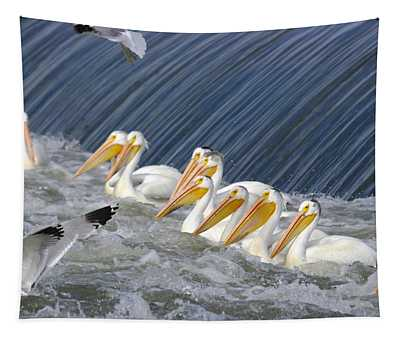 Seagulls Intrude Upon The Pelican Social Gathering Tapestry