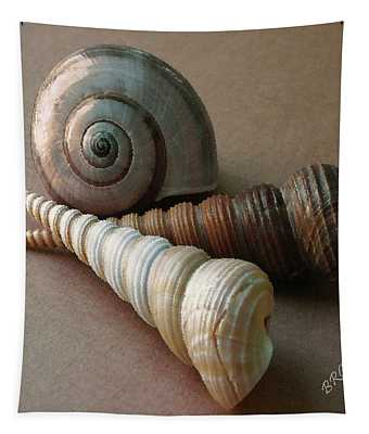 Seashells Spectacular No 29  Tapestry