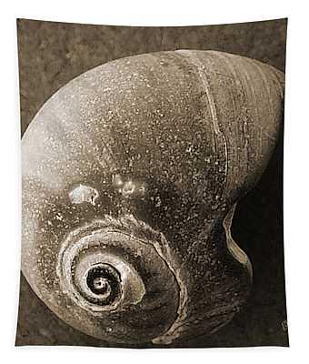 Seashells Spectacular No 31 Tapestry