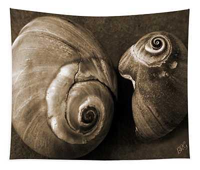 Seashells Spectacular No 6 Tapestry
