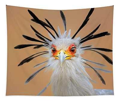 Secretary Bird Portrait Close-up Head Shot Tapestry