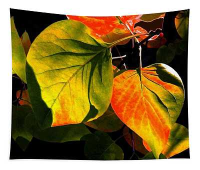 Shades And Shadows Tapestry