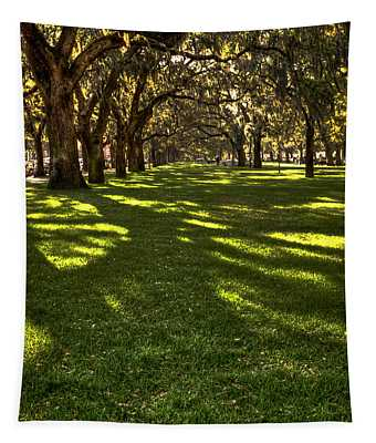 Shadows Of Emmet Park Savannah Tapestry