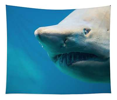 Shark Tapestry
