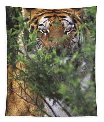 Siberian Tiger In Hiding Wildlife Rescue Tapestry