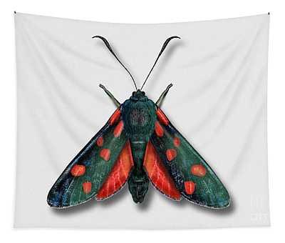 Six Spot Burnet Butterfly - Zygaena Filipendulae Naturalistic Painting - Nettersheim Eifel Tapestry