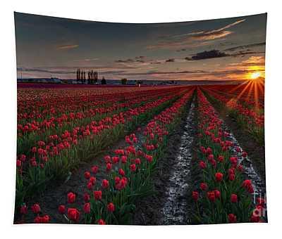 Skagit Tulip Sunstar Field Tapestry